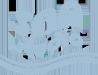 San Studio logo
